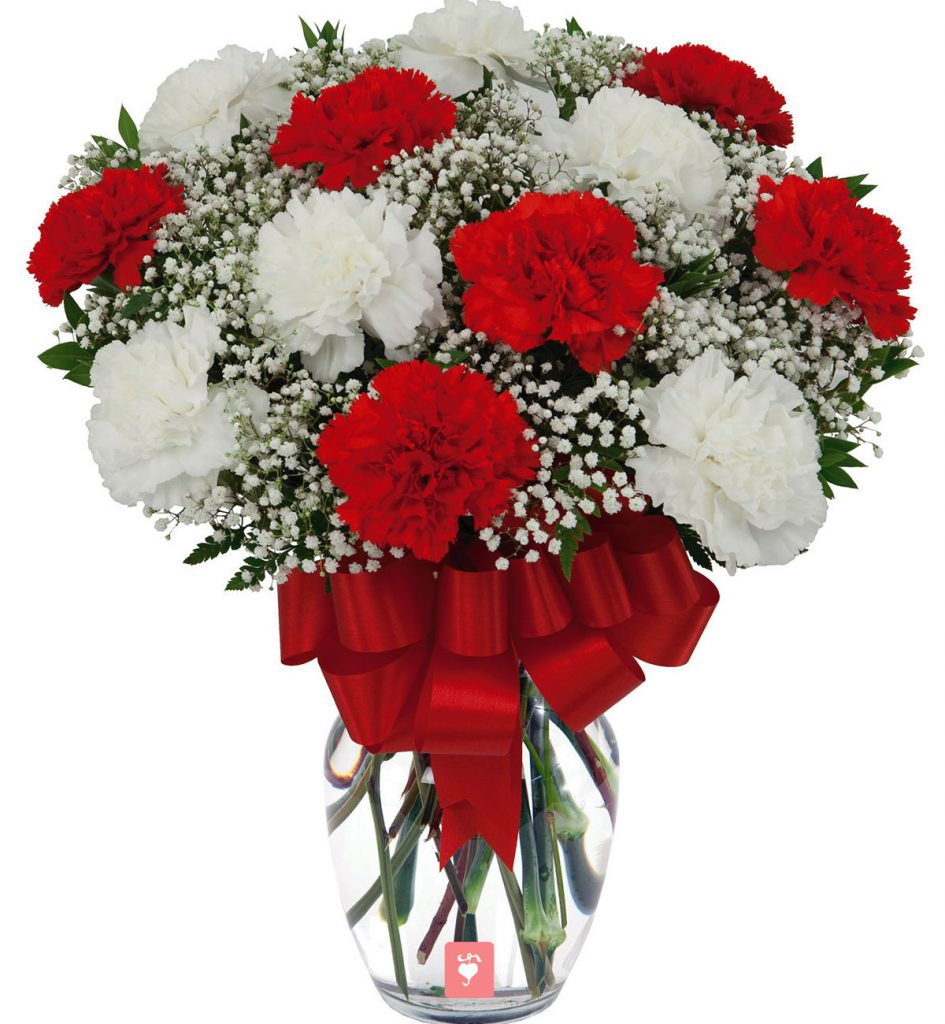 White And Red Roses Combo