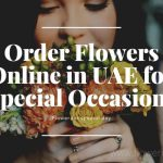 Order Beautiful Flowers Online in UAE for Special Occasions at Affordable Prices!