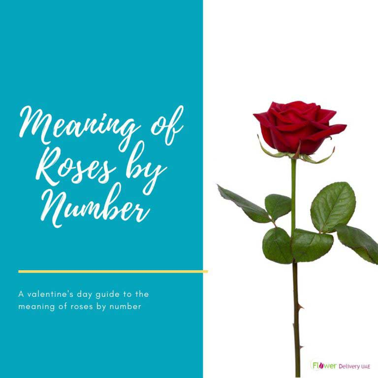 The Meaning of Each Number of Roses