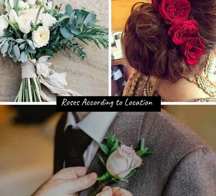 Roses According to Location