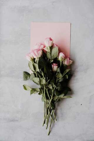 Wedding Anniversary Rrose Flower