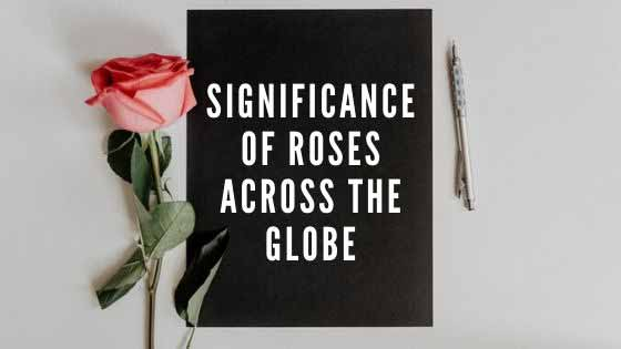 Significance of Roses across the Globe