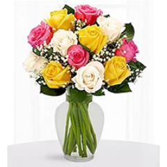 12 Multi Color Roses