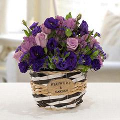 Pleasant Astoma N Rose Flower Basket