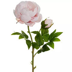 6 Artificial Light Pink Peonies Stick