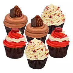 Set of 6 Delightful Cupcakes