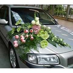 Premium Car Decoration