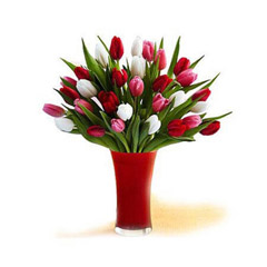 Roses and Tulips in Glass Vase