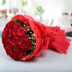 Magical Red Roses