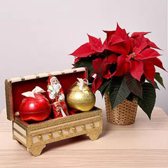 Lindt Milk Chocolates and Poinsettia Plant Combo