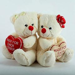 Cuddlesome Teddy Bear