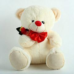 Adorable Valentines Teddy