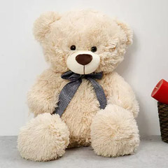 Off White Colour Adorable Teddy Bear