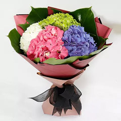 Beautiful 4 Colour Hydrangea Bouquet