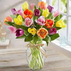 Colourful Tulips In Glass Vase