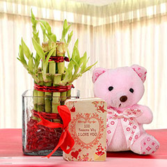 Lucky Bamboo & Bear Love