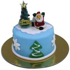 Christmas Santa Mono Cake