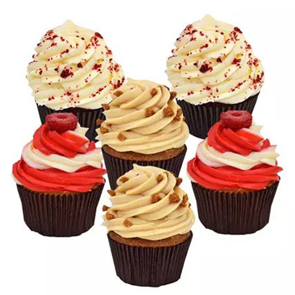 Six Delighful Cupcakes