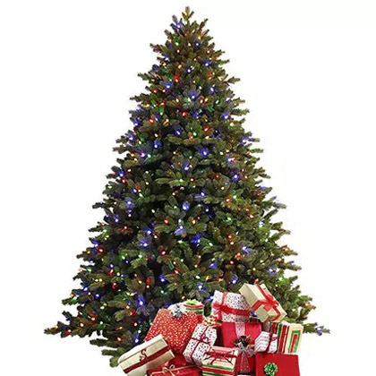 Fresh Christmas Tree with LED