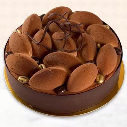 Yummy Tiramisu Cake (500gm)